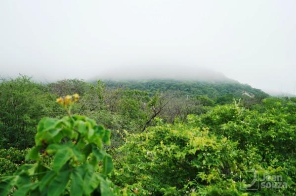 A névoa esconde a serra que contrasta com o verde do mato. Entre São Vicente e C. Novos.