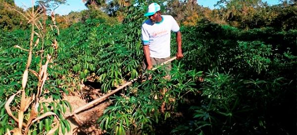 A comunidade tem 2.500 hectares, com cerca de 260 famílias cadastradas pelo Incra.