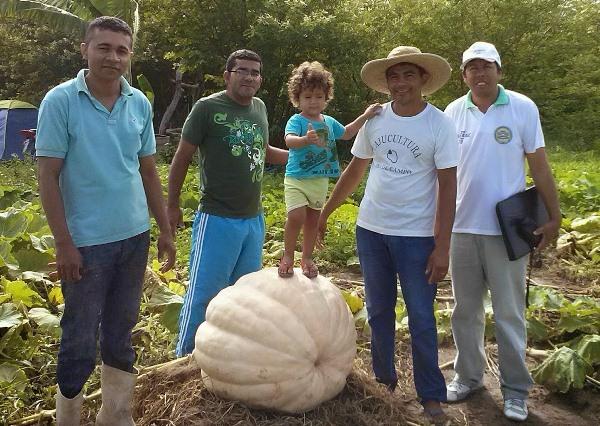 Uma equipe do Globo Rural deverá ir ao local nos próximos dias fazer uma matéria sobre o gigante.