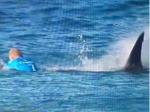 Surfista foi atacado por tubarão em etapa na África do Sul