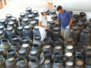 Objetivo também é incentivar os pequenos e médios produtores do estado. (Foto: MDS)
