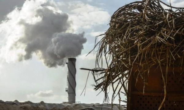 Após gasolina, usinas reajustam etanol em 12,3%