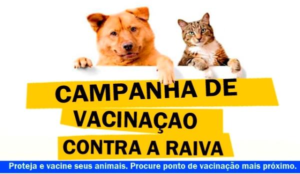Campanha de vacinação antirrábica em Currais Novos acontecerá de 01 à 05 de dezembro