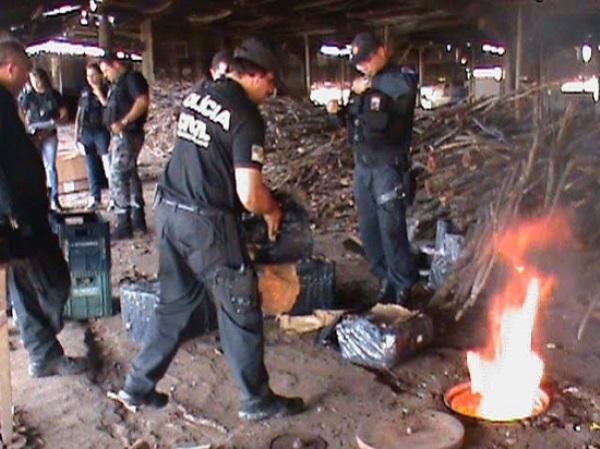 Quase uma tonelada de drogas foi incinerada pela Polícia Civil