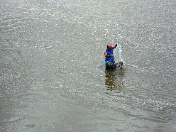 Os peixes começam aparecer e pescadores estão aproveitando.