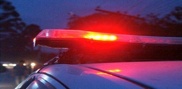 Polícia Civil descobre plantação de maconha em Natal
