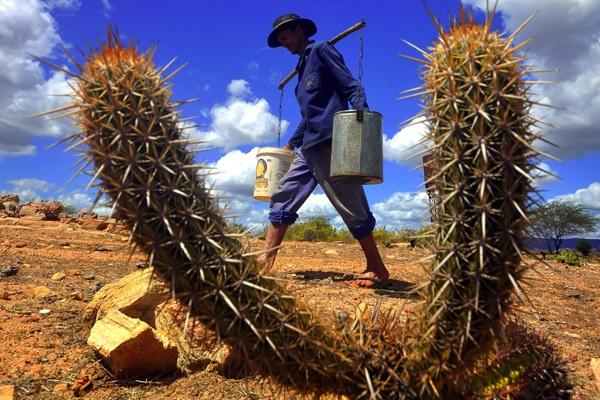 MP destina R$ 316 milhões para atender a agricultores familiares atingidos pela seca