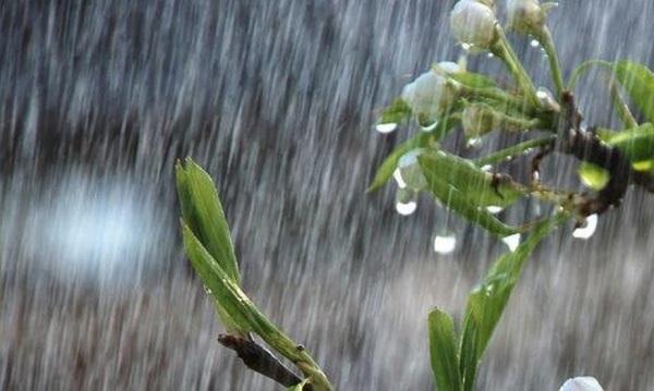 Chuvas no Seridó superaram 200 mm