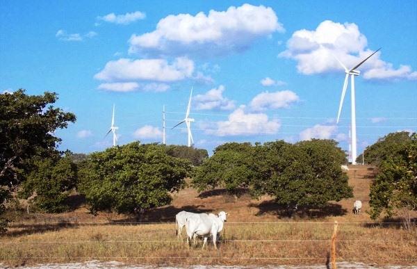 RN sedia Fórum Nacional Eólico e Solarinvest