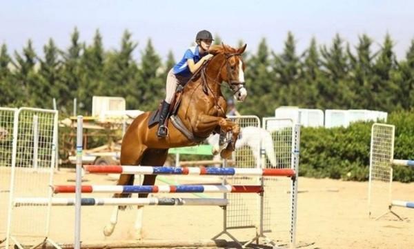 Australiana de 19 anos morre após cair do cavalo em seletiva para a Rio-2016