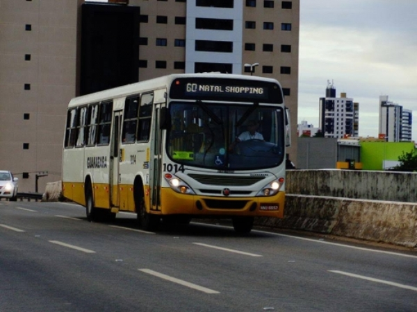 Foto: Divulgação / STTU