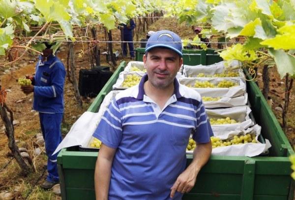 Produtor André Aleixo trocou a cultura de hortaliças pelo cultivo de uvas Itália