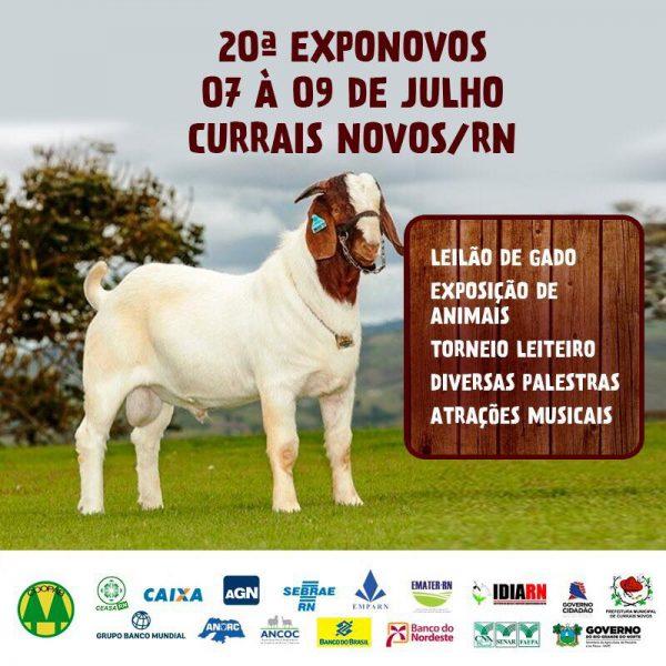 Resultado de imagem para cartaz da expo novos 2017 em currais novos