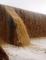 BELA IMAGEM: Vídeo mostra rio com bastante água na zona rural de Currais Novos