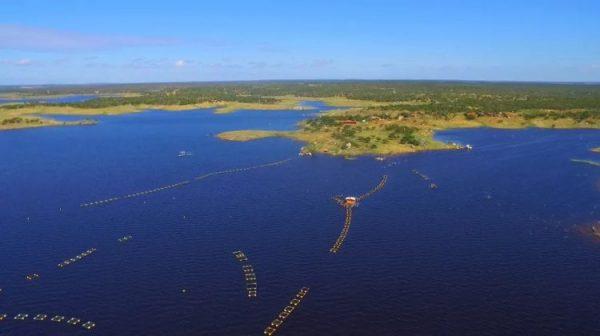 Barragem Umari acumula quase 83% da capacidade